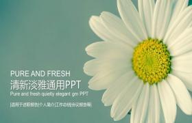 典雅的清新风格浅鲜花背景PPT模板