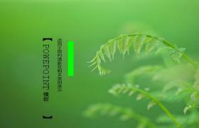绿色清新生态环境ppt模板