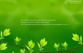 绿色清新主题ppt模板