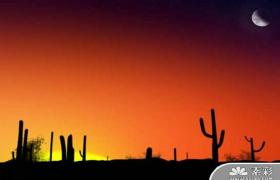 沙漠夕阳西下风光PPT模板