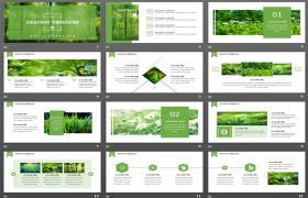绿色和新鲜森林自然景观PPT模板下载摄影排版背景