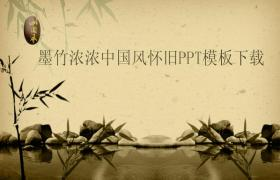 Clear aqua green bamboo graphite powerpoint template download online