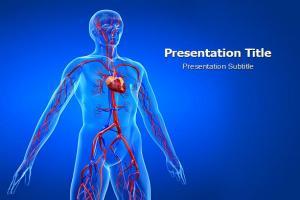 人体动脉PPT模板下载