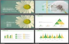 雅致清新的花卉背景PPT模板下载