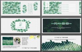 免费下载新鲜水彩手绘绿叶PPT模板下载