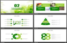 绿色新鲜手绘植物工作计划PPT模板下载