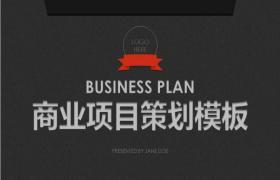 黑企业项目规划方案PPT模板下载