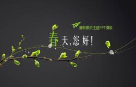 带简单绿色分支背景的Spring Hello PPT模板下载