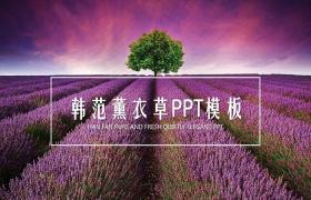 紫色薰衣草背景PPT模板下载免费下载