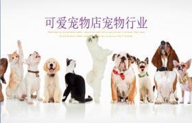 用于狗、狗和猫排队背景的宠物PPT模板下载