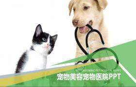 带小狗和猫背景的宠物的PPT模板下载