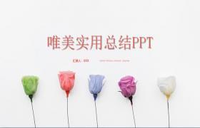 唯美新鲜玫瑰背景PPT模板下载