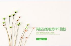 清新优雅简单而美丽的PPT模板
