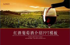 葡萄种植庄园红酒庄园PPT模板