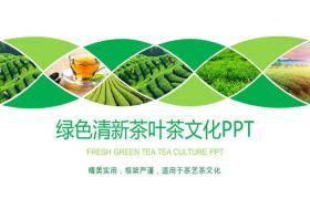 清新绿色茶园和茶叶产品介绍工作汇报ppt模板