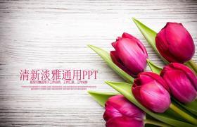 带精致玫瑰背景的情人节PPT模板下载